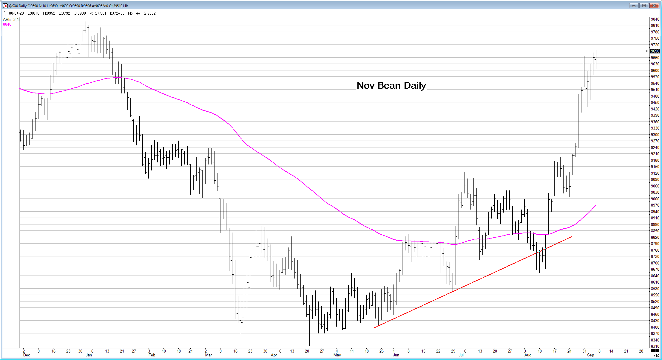 Nov  Bean Daily