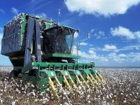 Cotton Futures Update